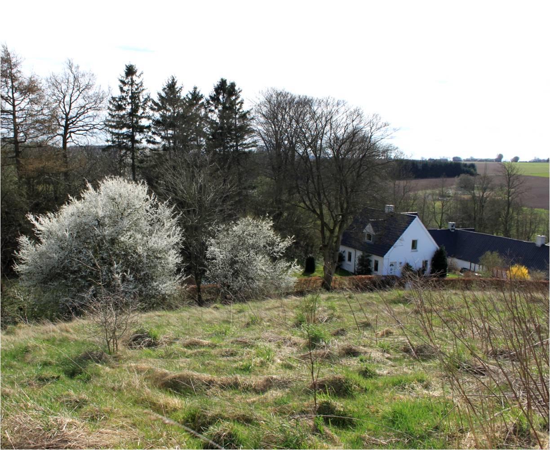 indretning – Dalsgaard i Skivholme