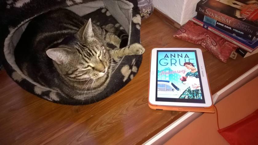 AG1 kat og tablet