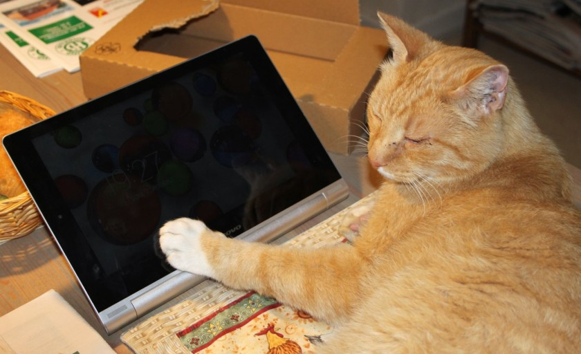 Puma tablet