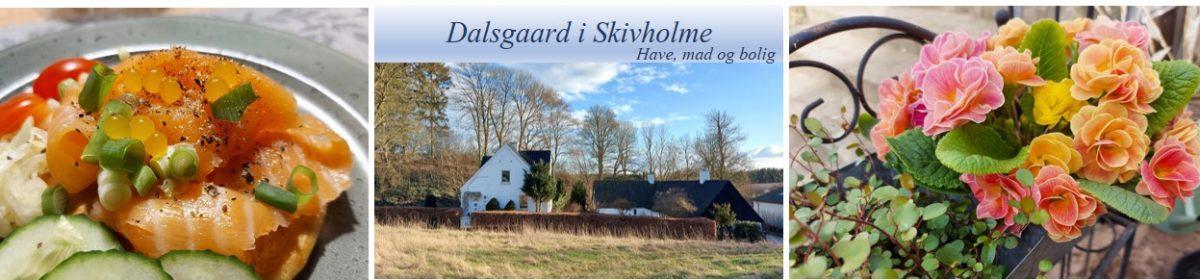 Dalsgaard i Skivholme